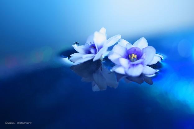 青い湖のほとりにて♪