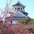 Photos: 長浜城