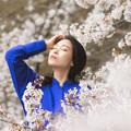 Photos: 朝桜