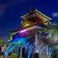 Photos: 丸岡城×NAKED
