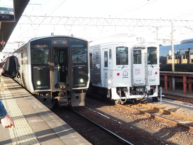 YC1・海幸山幸・36+3