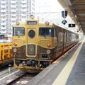 Photos: P5020039