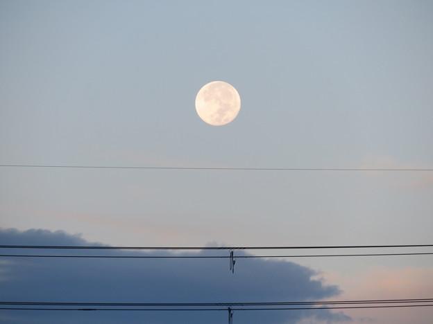 Photos: 早朝の十五夜