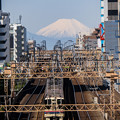 Photo: 富士山と京王線
