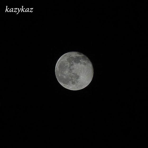 Photos: 十六夜