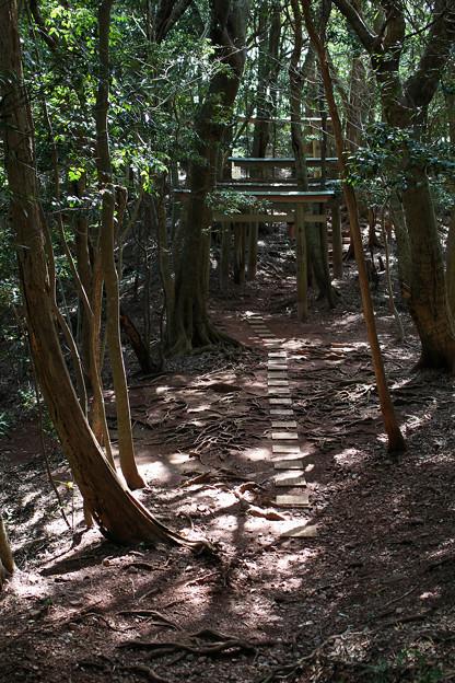 青龍寺・奥の院(1)