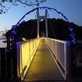 観月橋にイルミネーション点灯