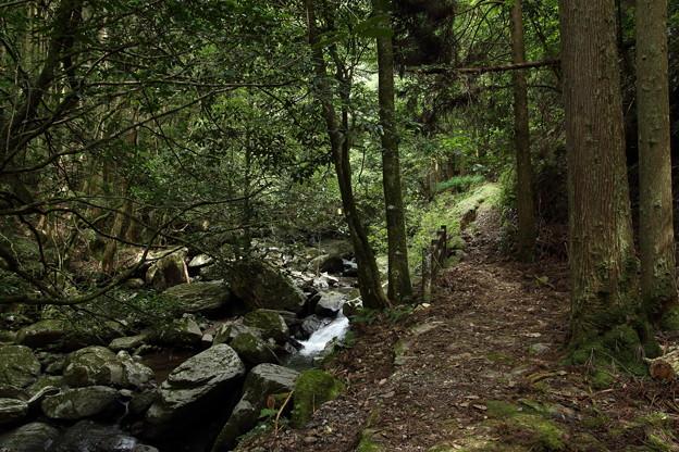 小滝への山道
