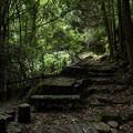 大滝への山道途中の休憩ところ