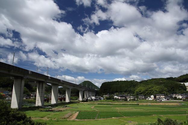 新幹線 夏