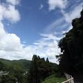 Photos: 遊歩道 夏