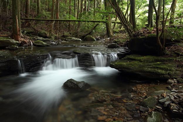 涼しげな流れ・・湯出七滝箱滝上流