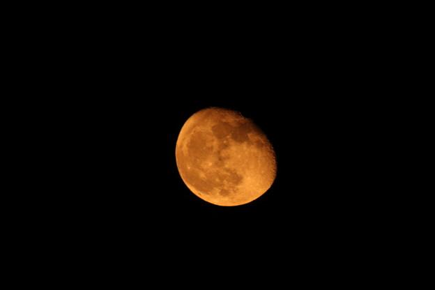 Photos: チョット赤い月