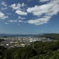 Photos: 今日の水俣・・中尾山登山道中腹