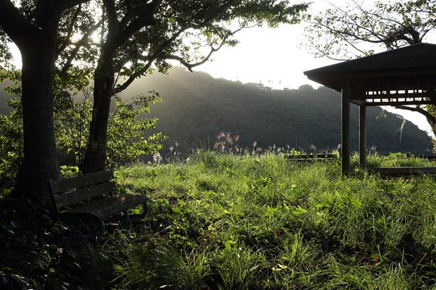 西湯の児緑地公園