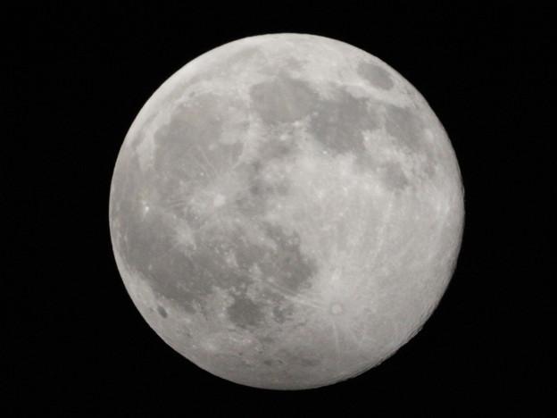 Photos: 2月の満月はスノームーン