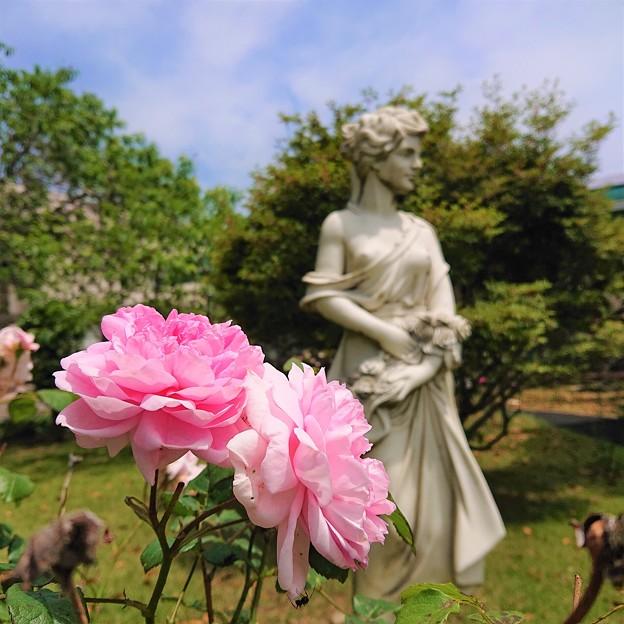 花も虫も祈る