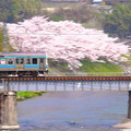 Photos: 春走る