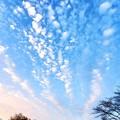 うろこ雲の川