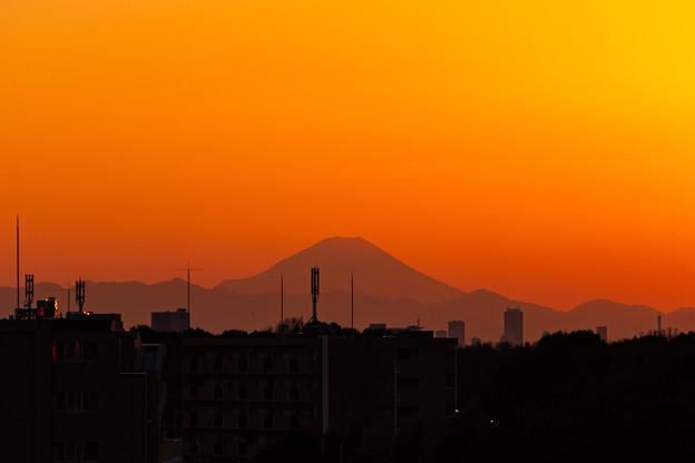 Photos: シリーズ(?)屋上夕焼け 2