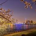桜と永代橋とスカイツリー
