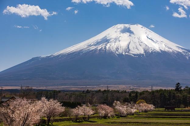 「富士山はアチラでございます~^^」