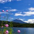 Photos: 西湖にて