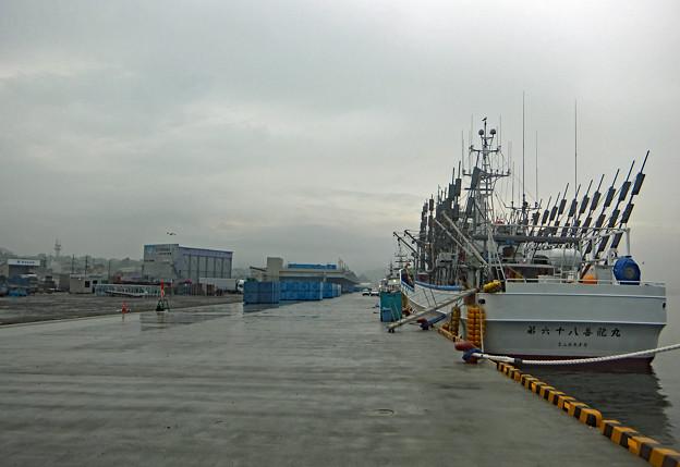 気仙沼港で (震災後をたどって 12)