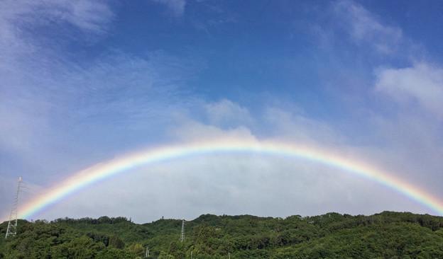 Photos: 今日は「虹の日」