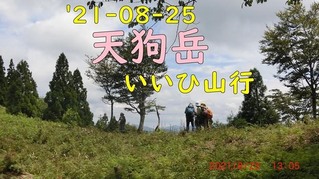 コピー ~ CIMG2133