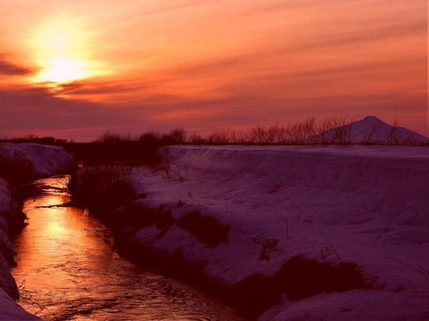 早春の川辺の情景
