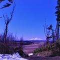 Photos: 丘の上から利尻富士を望む