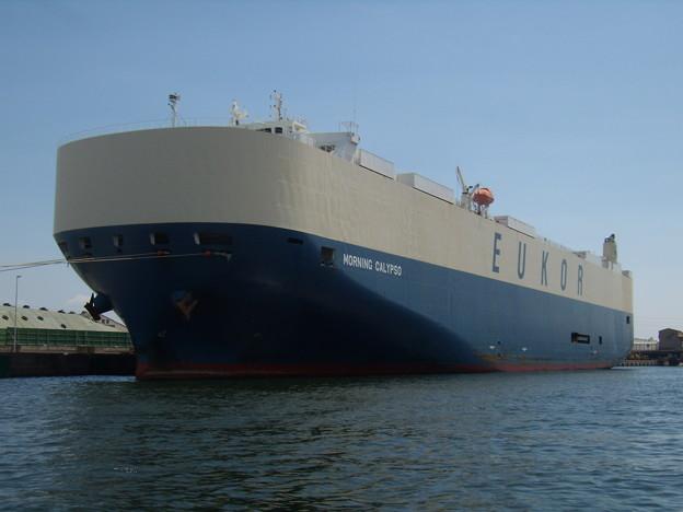 Ro-Ro Ship - MORNING CALYPSO の近影