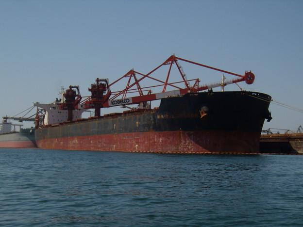 Bulk carrier -  MINERAL DRAGON の近影