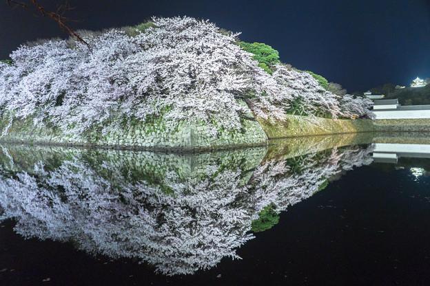 彦根城水鏡
