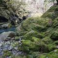 水量ある渓流