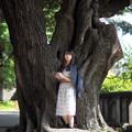 巨木に抱かれて