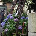 Photos: 白山神社にて