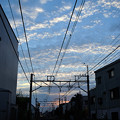 Photos: 夕景