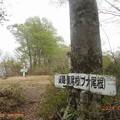yokoyama94