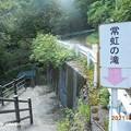 Photos: tokoniji1