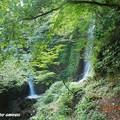 Photos: tokoniji3