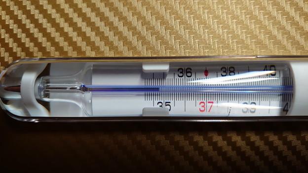 水銀不使用の体温計2