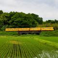 Photos: 北勢線