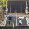 Photos: 雨降る中