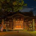 Photos: 夜の参拝
