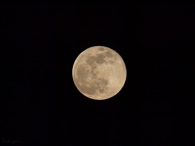 2021年4月の満月