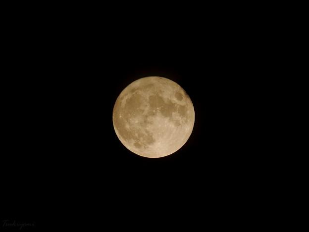 Photos: 2021年8月の満月