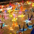 千羽の折り鶴の浮かぶ池