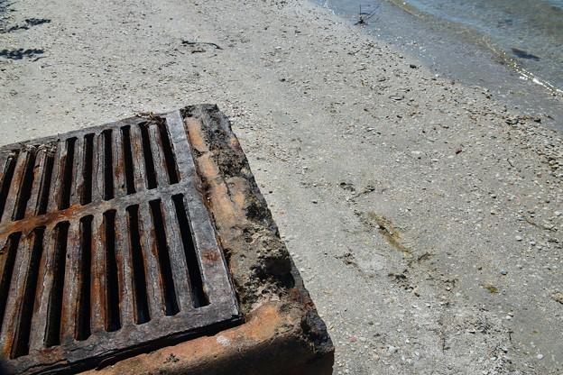 Muddy Water Clean Water 3-7-21